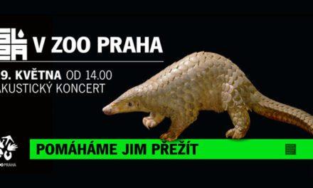 SLZA zahraje v Zoo Praha na podporu ochrany ohrožených druhů