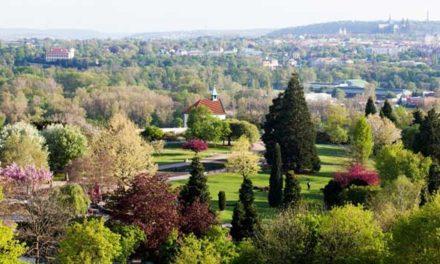 Závlaha trojské botanické zahrady bude z Vltavy