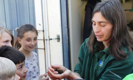 Žáci ze ZŠ Letohradská věnovali největší dar na záchranu zvířátek